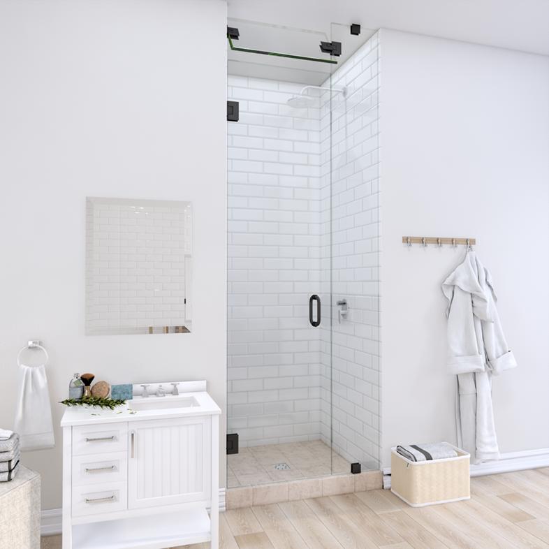 Right Open Door & Panel Shower Door with Steam Shower Transom