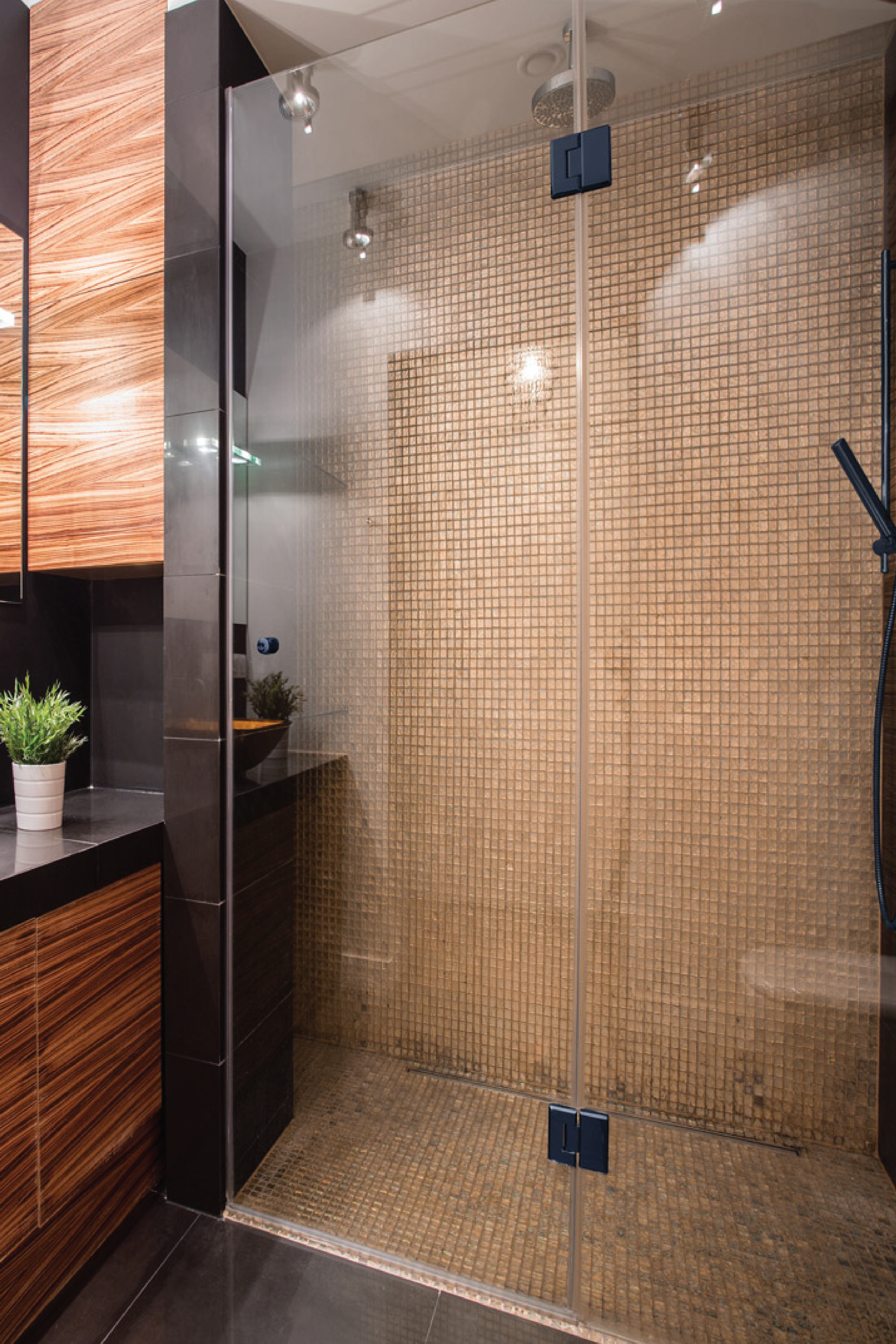 Door and Panel Shower Door